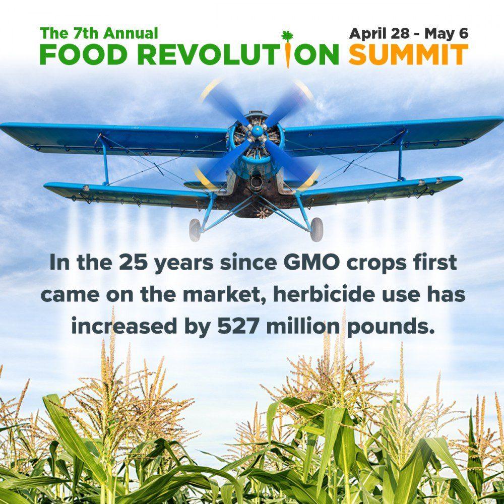 food revolution gmos