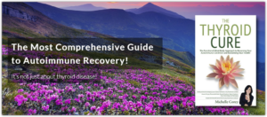michelle corey autoimmune & thyroid cure book