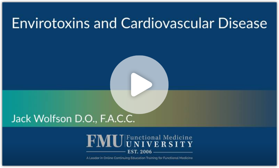 dr jack wolfson cardilogist lecture on envirotoxins and the heart